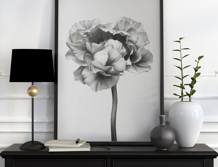 Black and white peony-2