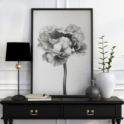 Black and white peony-2